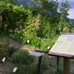 Museo Naturalistico - Lama dei Peligni